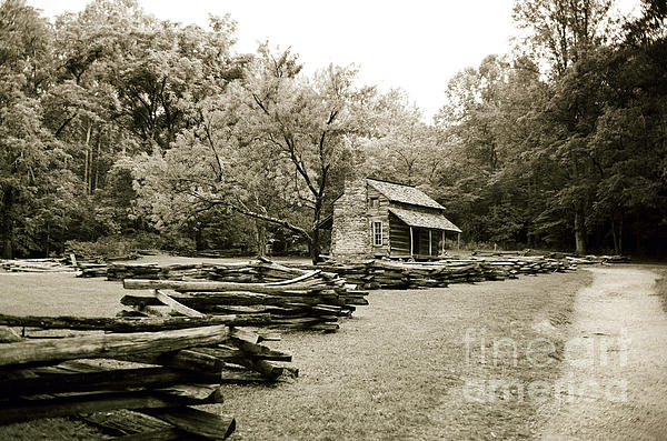 Pioneers Cabin Print by Scott Pellegrin