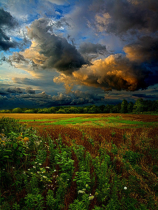 Places In The Heart Print by Phil Koch