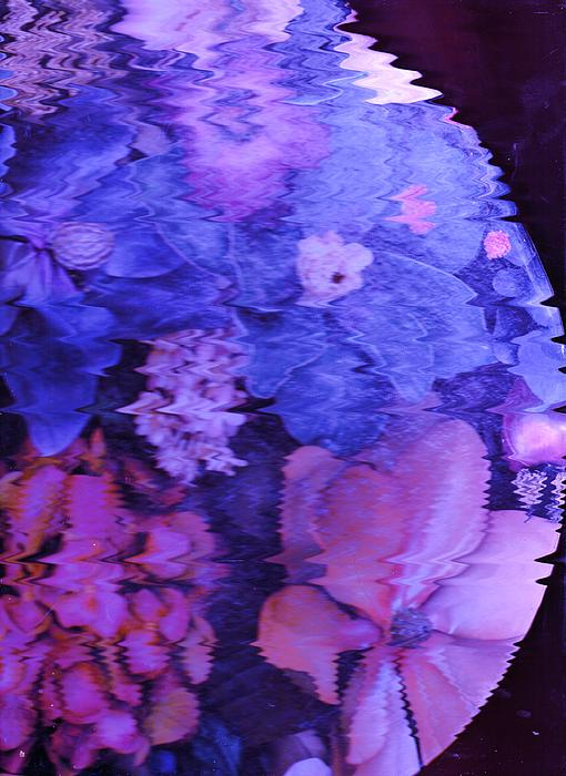 Planet Of Flowers Print by Anne-Elizabeth Whiteway