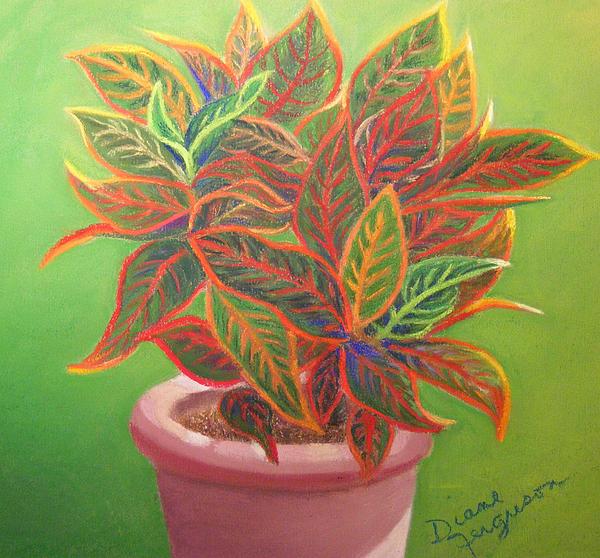 Diane Ferguson - Plant Portrait II
