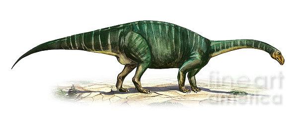 Plateosaurus Engelhardti, A Prehistoric Print by Sergey Krasovskiy