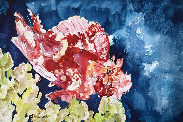 Png Leaf Fish Print by Tanya L Haynes - Printscapes