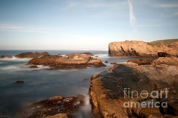 Point Lobos Number Three Print by Catherine Lau