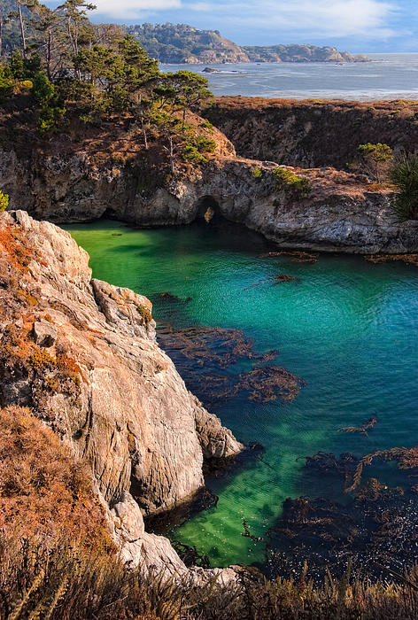 Point Lobos State Reserve California Print by Utah Images