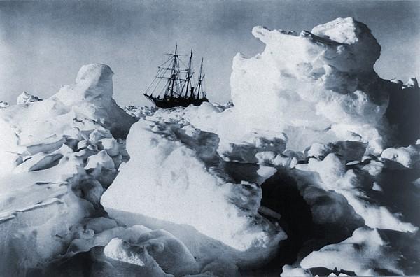Polar Explorer, Ernest Shackletons Print by Everett
