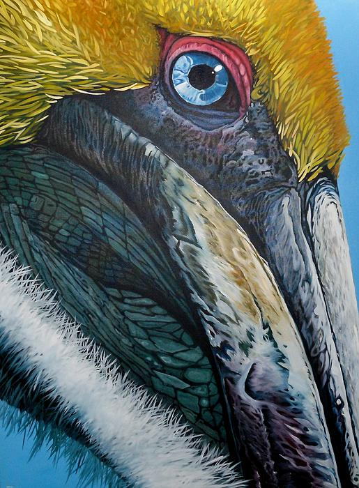Jon Ferrentino - Pompous Pelican