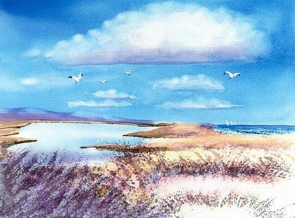 Pond At South Cape Beach Print by Joseph Gallant
