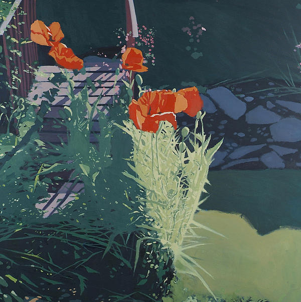 Malcolm Warrilow - Poppies and dry stream
