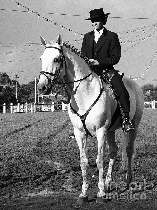 Portuguese Horse Rider Print by Gaspar Avila