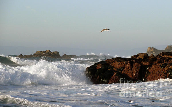 Juan Romagosa - Pounding Surf