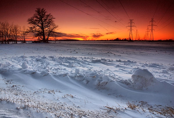 Powerlines In Winter Print by Cale Best