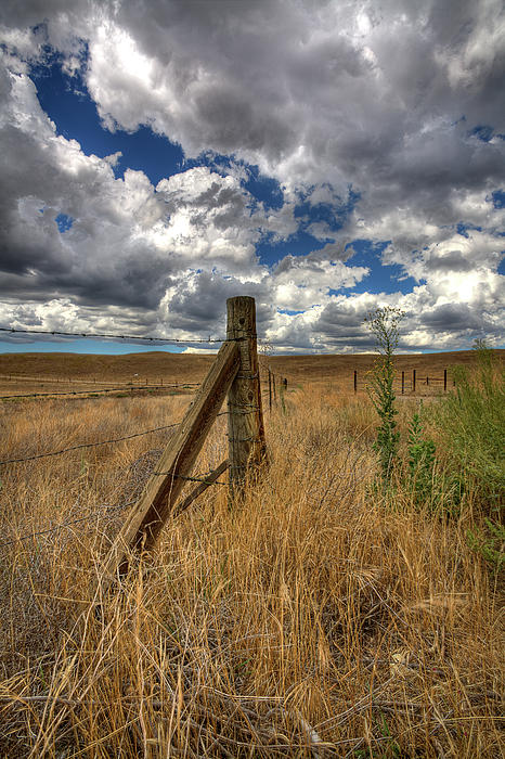 Prarie Sky Print by Peter Tellone