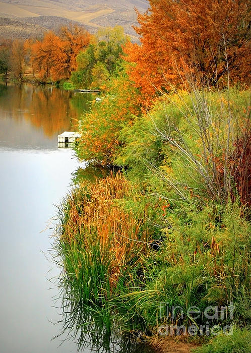 Prosser Autumn Docks Print by Carol Groenen