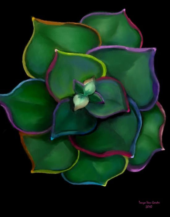 Psychedelic Succulent Print by Tanya Van Gorder