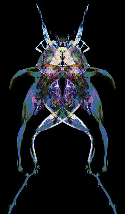 Psycho Frog Bug Print by David Kleinsasser