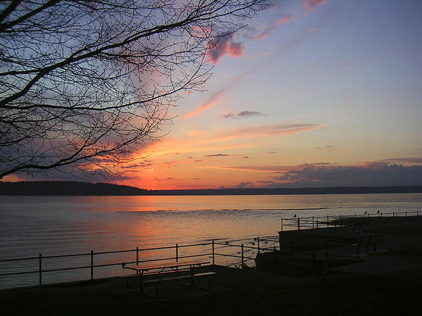 Puget Sound Sunset Print by Edward Coumou
