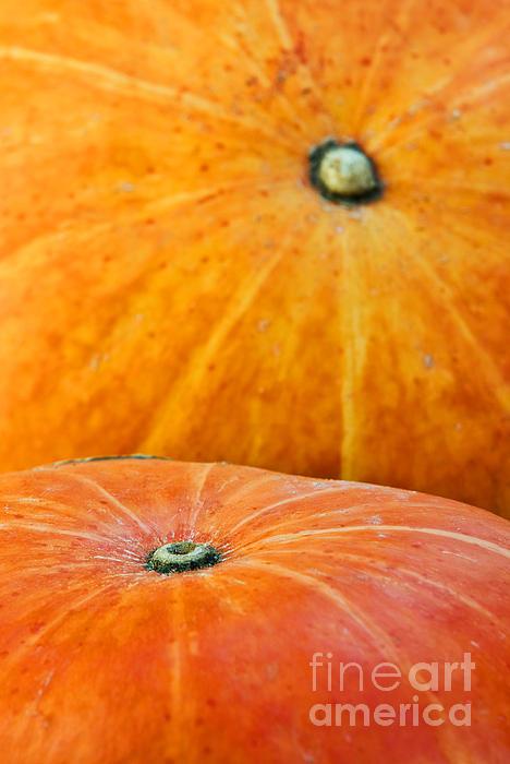 Pumpkins Background Print by Carlos Caetano