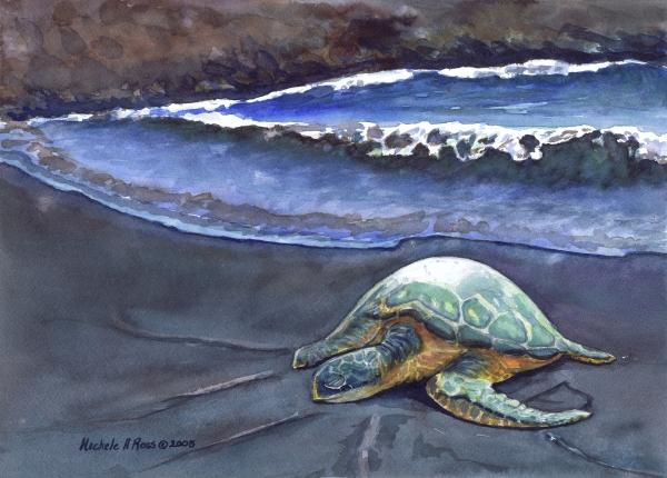 Punaluu Honu Beach Nap Print by Michele Ross