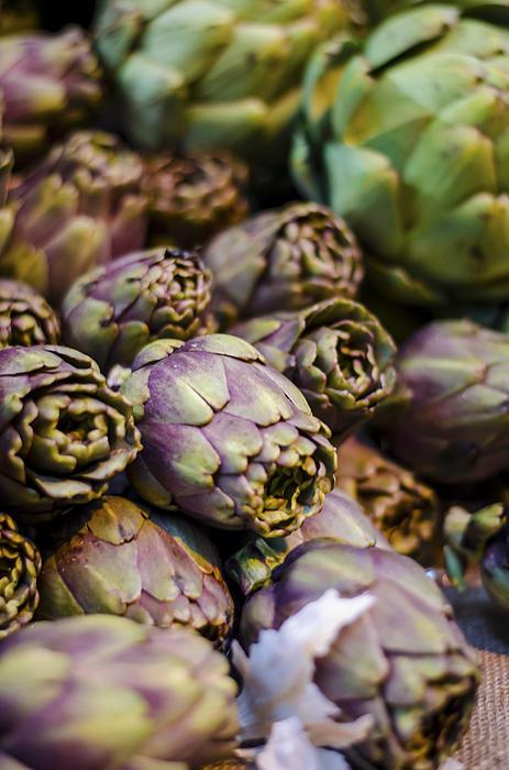 Purple Artichokes At The Market Print by Heather Applegate