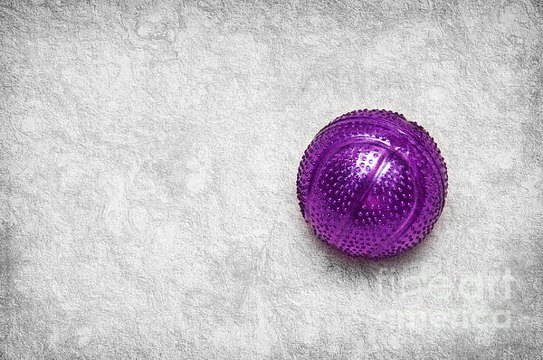 Purple Ball Cat Toy Photograph