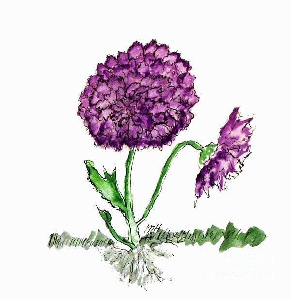 Marsha Heiken - Purple Chrysanthamums