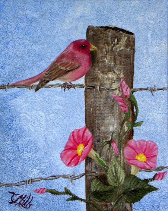 Purple Finch And Morning Glories Painting  - Purple Finch And Morning Glories Fine Art Print