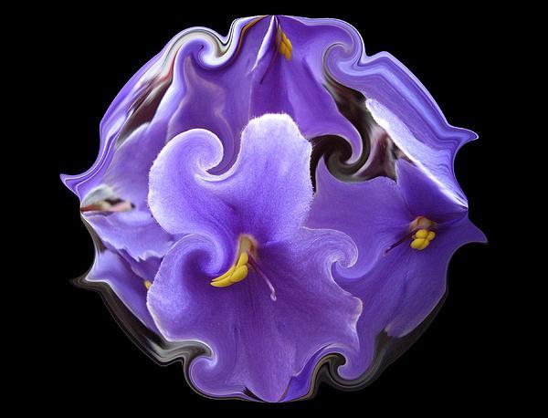 Purple Violets II Print by Yvette Pichette