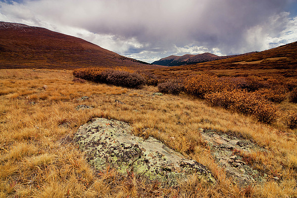 Quanella Pass Print by Dragonfly 7