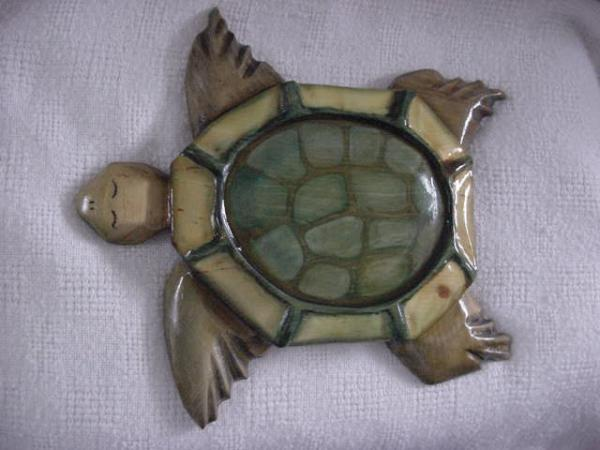 Quasi The Sea Turtle Relief