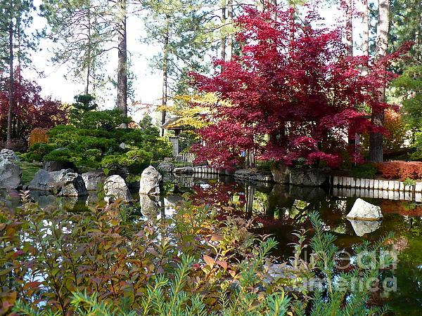 Quiet Autumn Pond Print by Carol Groenen