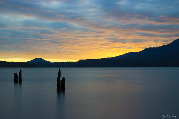 Heidi Smith - Quinault Sunset