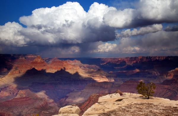 Rain Over The Grand Canyon Print by Mike  Dawson