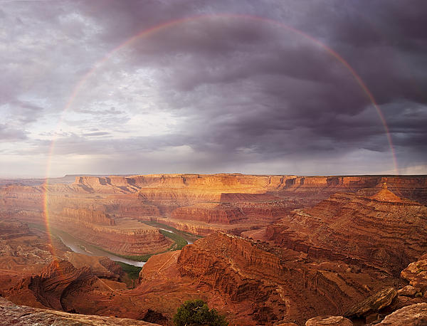 Dane Spangler - Rainbow at Dead Horse Point