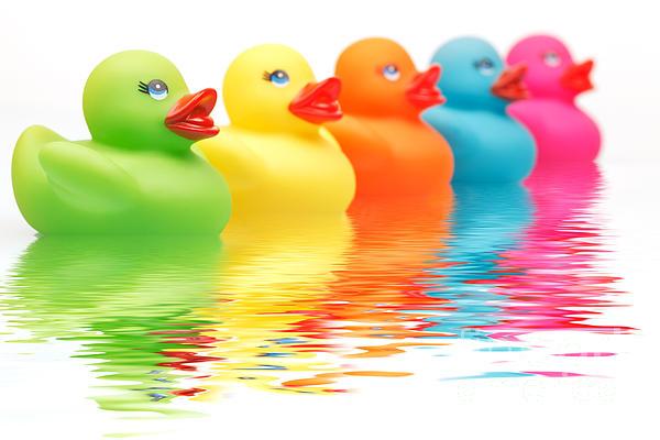 Rainbow Ducks Print by Martin Williams