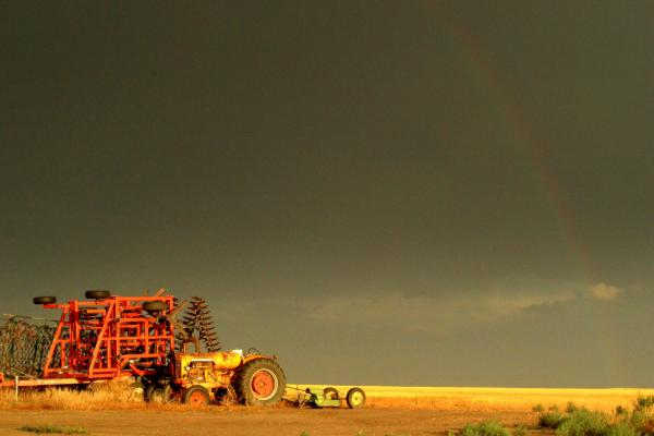 Rainbow Harvest.. Print by Al  Swasey