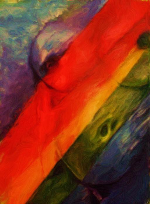 Rainbow Nude Print by Shelley Bain