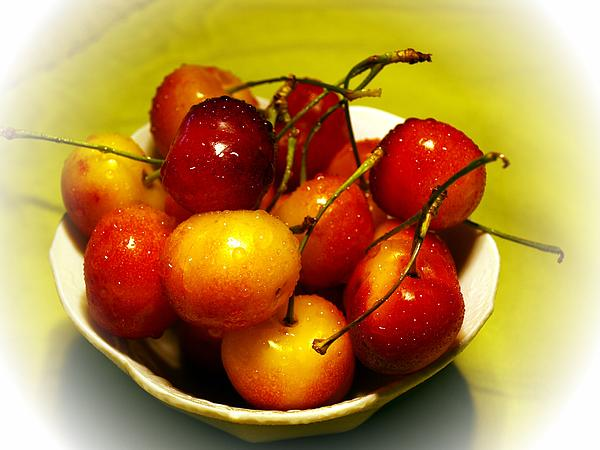 Rainier Cherries Print by Regina Arnold
