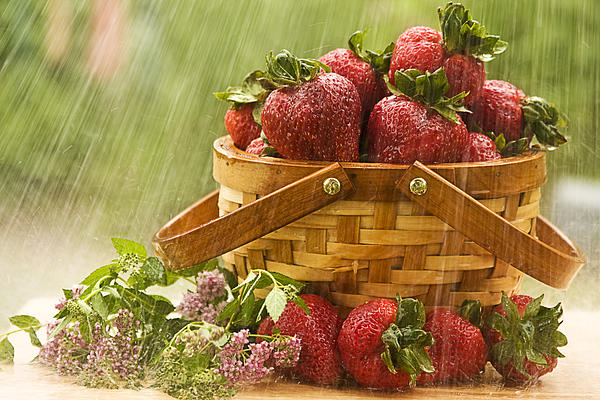 Trudy Wilkerson - Raining on Strawberries