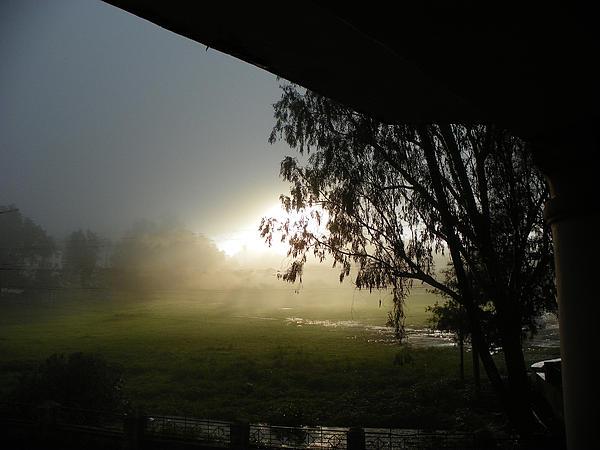 Good Morning Rainy Images: Rainy Morning By Nandan NAGWEKAR