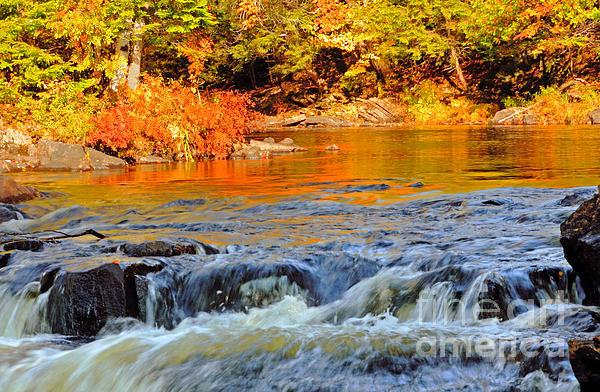Charline Xia - Rapids in Autumn