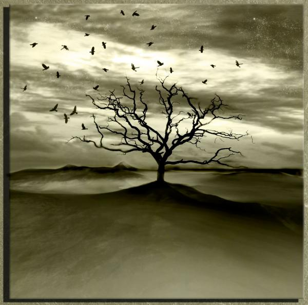 Raven Valley Print by Photodream Art
