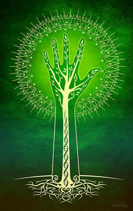 Reach Print by Cristina McAllister