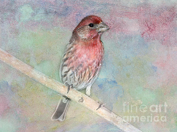 Ready To Sing My Song Print by Betty LaRue