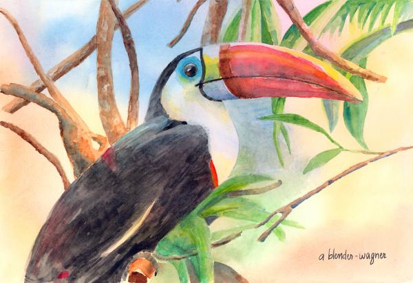 Red-billed Toucan Print by Arline Wagner