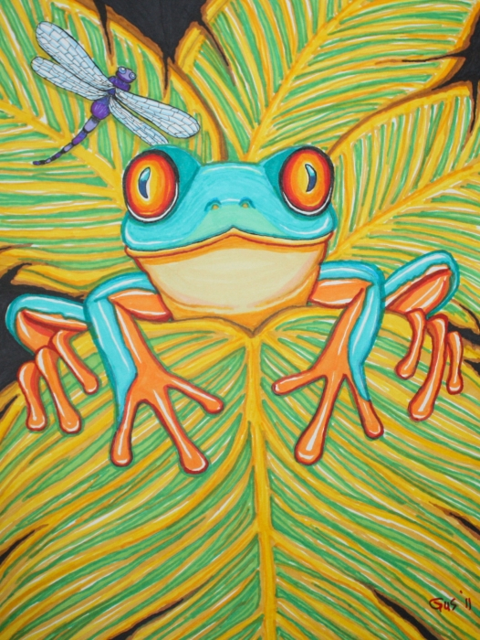 Red Eyed Tree Frog And Dragonfly Print by Nick Gustafson