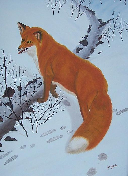Red Fox In Snow Print by Melinda Fox