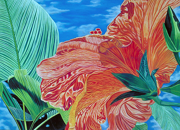 Red Hibiscus And Palms Print by Stephen Mack