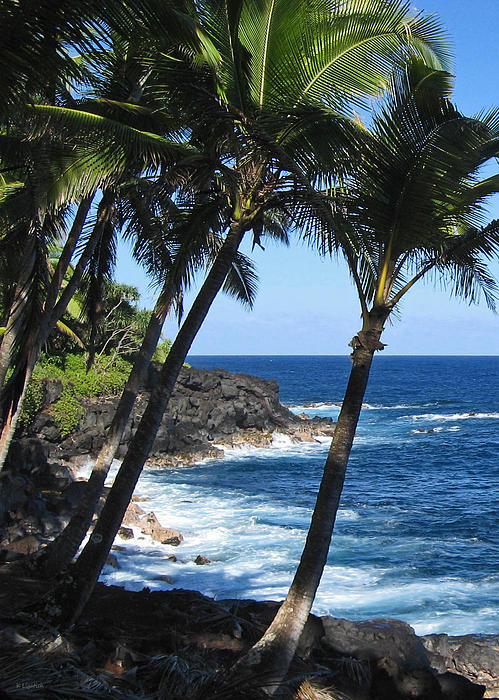 Red Road Drive On Hawaii Island Print by Kerri Ligatich
