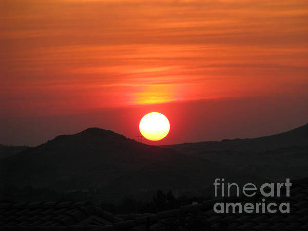 Phyllis Kaltenbach - Red Sunset
