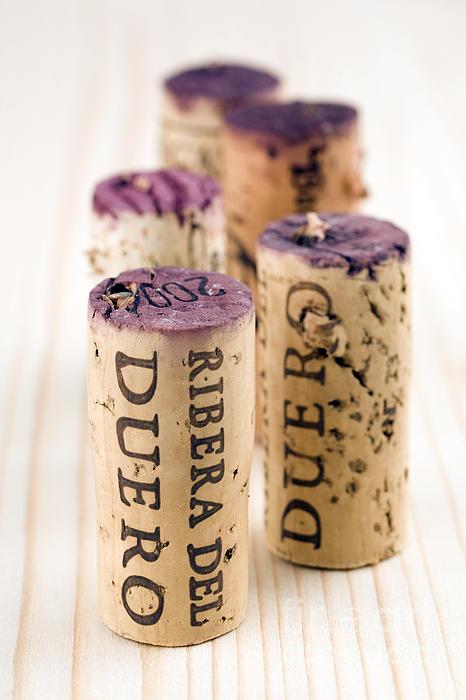Red Wine Corks From Ribera Del Duero Print by Frank Tschakert